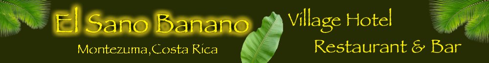 banner de encabezado de hotel sano banano beachside