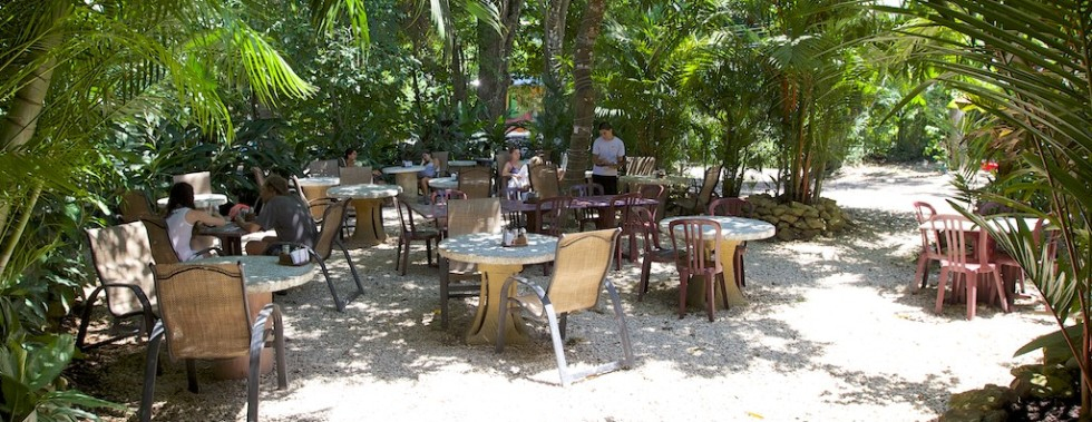 El Sano Banano Restaurant – Chairs & Tables