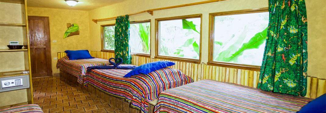 El Sano Banano Village Hotel Room king suite with 3 singles