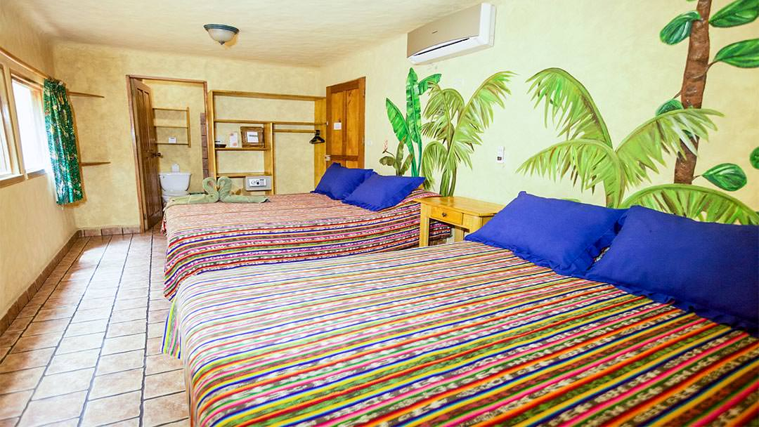 El Sano Banano Village Hotel Rooms are always spacious and full of natural light