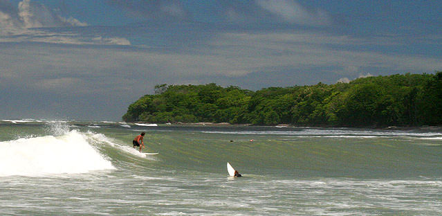 surf-montezuma